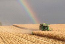 Farm days / Farming