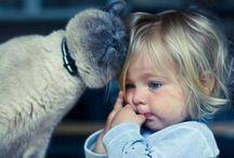 gyerekek felnőttek és a macskák