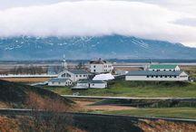 Iceland / Enjoy the beauty of Iceland!