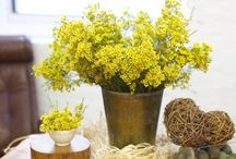 flowers for any table / fun and simple ways to decorate your table. No special occasion required!