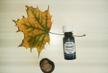 Podzimní esenciální oleje