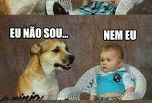 zueira kkk