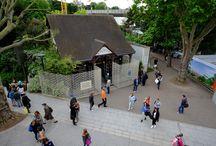Le Musée de la FFT 2014 / Le Musée de la FFT, situé dans le Stade, est ouvert toute la quinzaine. Venez découvrir les expositions permanentes et temporaires