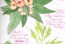 Art and Nature Journaling / Art journaling is a great way to connect with nature, life, inspiration, and yourself while helping you actualize your relationships and goals. Check out this great way to get connected to nature, your goals, and your path through creativity.