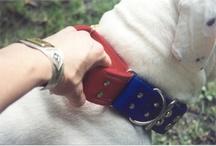 BLOCKY DOGS COLLAR STYLES / Three styles of #collars available in three widths. #Flatcollar #martingale #customdogcollars #1inchcollar #1.5inchcollar #2inchcollar