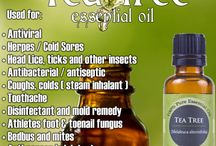 Essensil oils / What oils do