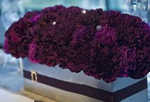 Aubergine Elegance / by Emily Edwards at Your Heart's Desire