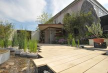 RHS Chelsea Flower Show 2013 / The landscape agency