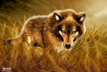 lobos / identidad