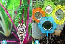 Bazaar plants