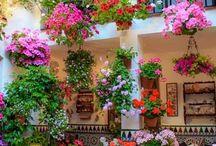 balkong interiör