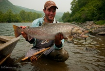 KUNDZHA / Fly fishing for kundzha, a char common to Russia.  Kundzha on the fly.