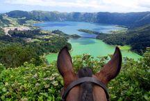Reiten auf den Azoren / Hier möchten wir Euch einen kleinen Vorgeschmack auf die Eindrücke, die Euch bei einer Reise mit uns auf die Azoren erwarten, vermitteln. Nähere Informationen findet Ihr hier: http://www.pferdreiter.de/portugal/azorentrails.php