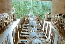 Wedding Fairy Lights / 0
