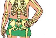 moje telo a zdravie