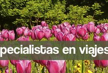 LOS DESTACADOS DE VIAJES ALMA GAIA / Foto Travels, Eco Travels, Camino de Santiago, Galicia