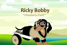 Ricky Bobby Visits Florida / Follow the adventures of two second grades classes in Florida as they meet CritterKin's poster child, Ricky Bobby and learn about kindness.