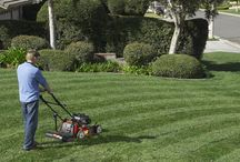 Lawnscaping / Turn your lawn into a work of art or make it look like a professional ball field. Check out these inspirational pins and products to help you.