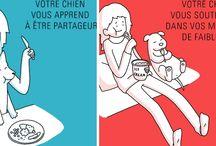 Illustrations sur les chiens par Catsass / Découvrez d'adorables illustrations des différentes personnalités du chien ou encore le quotidien avec un chien