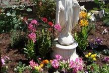 Mary Garden / by D. M. Baker