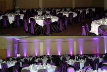 Uplighting and Lighting / Some ideas for uplighting to use at your wedding.