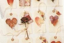 valentine's day.  heart day.  love....