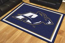 Akron Zips Cornhole Boards, Tailgating Gear and Man Cave Accessories / University of Akron Zips Cornhole Board Sets and Corn Hole Bags, Tailgating Games, and Fan Cave Decor