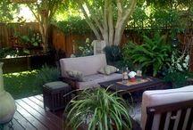 My future garden!