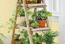 indoor and small garden ideas