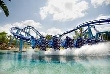 Big Thrill Rides!