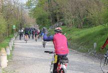 Vivere la natura / Camminate e passeggiate a piedi e in bicicletta, diurne, notturne, con guida naturalistica ed escursionistica e con associazioni locali. Corsi e allenamenti di camminata nordica