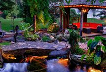 Backyard Pond Makeover / Making your backyard the paradise you've always dreamed of