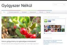 Magas Vérnyomás Ellen / http://magasvernyomasellen.blogspot.hu