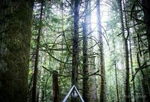 // camp ground and camping weddings //