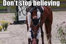 Equestrians / If you've ever owned a horse, you will understand. / by Jules