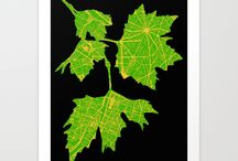 Botanical leaves from cities