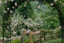 Zahrady, zákoutí