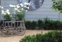 Little Garden / Everything on wonder fantasy gardens.