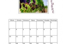 CALENDARI / Calendar