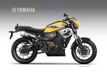 XSR900 / Xsr900