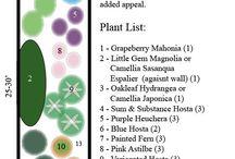 Paisagismo e plantas