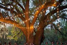 Ideas A&T wedding