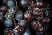 Respect Your Elderberries