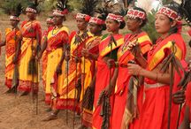 Do You Ever Experienced the Charm of India Tribal Tours