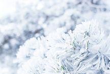 Winter by Ann-Kristina
