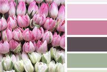 Farb Inspirationen
