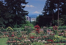 """Visit Portland's Attractions / Portland's """"must see"""" list when staying with us!"""