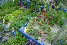 Orto Giardino (ortogiardino) - Vegetables Garden / L'orto-giardino con verdure miste e fiori