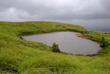 Wayanad,kerala,South India
