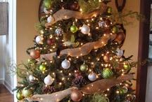 Christmas decor ideas / by Shelly Thompson